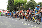 The peloton pass through the village of Sabres during Stage 18 of the 2010 Tour de France running 198km from Salies-de-Bearn to Bordeaux, France. 23rd July 2010.<br /> (Photo by Eoin Clarke/NEWSFILE).<br /> All photos usage must carry mandatory copyright credit (© NEWSFILE | Eoin Clarke)