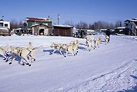 Jim Lanier on Road Leaves Galena Checkpoint Alaska