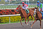 14 February 2010: Lucky Lass with Eibar Coa in the Coconut Grove Stakes at Gulfstream Park in Hallandale Beach, FL.