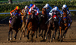 December 26, 2020: The Field for the La Brea Stakes races off the turn at Santa Anita Park in Arcadia, California on December 26, 2020. Evers/Eclipse Sportswire/CSM