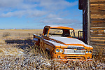 First snow on the old orange dodge truck. North Central Montana