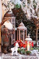 PIC_1160-Roxana Zouber Christmas Garden
