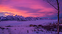"""Teton Sunset - Shane's Cabin<br /> One February I stood in the cold for hours, gloved hands holding a freezing metal camera and tripod, and was rewarded by this evening display over the Tetons and Jackson Hole.  The cabin in the foreground is on Gros Ventre Road near Grand Teton National Park.  It was seen several times in the 1953 film, """"Shane,"""" with Alan Ladd.  The cabin was homesteaded in 1916 by John Erwin and later purchased by Luther Taylor in 1923.  It is now a candidate for the U.S. registry of historic places."""
