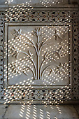 Agra, Uttar Pradesh, India. The Taj Mahal; detail of floral carving on a bas relief marble panel in dfappled light coming through a lattice screen.