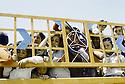 Irak 1991.Le retour des réfugiés: à la frontière de Haj Omran.Iraq 1991.Kurdish refugees coming back: in Haj Omran, the border