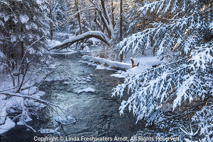 A pretty winter creek in northern Wisconsin.
