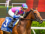 August 07, 2021: War Like Goddess #3, ridden by jockey Julian Leparoux wins the Glens Falls Stakes (Grade 2) on the turf at Saratoga Race Course in Saratoga Springs, N.Y. on August 7, 2021. Dan Heary/Eclipse Sportswire/CSM