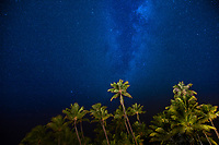 Starry sky and Milky Way over lit-up, green palm trees on a clear summer night, on Bora Bora island, near Tahiti, French Polynesia, Pacific Ocean