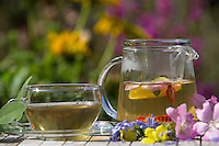 Blütentee, Kräutertee, Früchtetee, Blüten-Tee, Kräuter-Tee, Früchte-Tee, Tee, Aufgussgetränk, Blüten, Früchte, Kräuter. Herb tea, Herbal tea, fruit tea, blossom tea, bloom tea, tea. Salbei, Salvia spec., Sage. Nachtkerze, Oenothera spec., Evening Primrose, Evening-Primrose, Evening star, Sun drop, Onagre. Heckenrose, Rose, Hagebutte, Hagebutten, hip, rose hip, Rosa canina, Rose. Rosen-Malve, Rosenmalve, Spitzblättrige Malve, Sigmarskraut, Siegmarswurz, Malva alcea, greater musk-mallow, cut leaved mallow, cut-leaved mallow, vervain mallow, hollyhock mallow