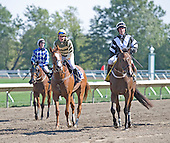 Ground Frost (left) - Italian Wedding (3) - Birthday Beau return after the Metcalf Memorial at Monmouth.