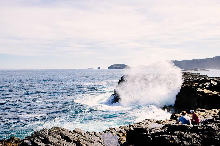 Image Ref: CA979<br /> Location: Bushrangers Bay Track<br /> Date of Shot: 28.09.19