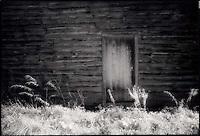 Side of Old Barn<br />