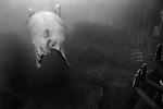 """The Greeting""<br /> Walrus Enclosure<br /> Coney Island Aquarium<br /> Coney Island , NY<br /> From the ""Captivity"" series<br /> © Thierry Gourjon-Bieltvedt"