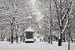The Commonwealth Avenue Mall in Boston, MA, USA