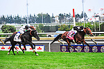 Joshua Tree (IRE)(8) with Jockey Lanfranco Dettori aboard dashes to victory at Pattison Canadian International  in Toronto, Canada on October 14, 2012.