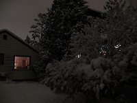 The McKinnon Ravine area provided a nocturnal post-card-like setting after a November snowstorm in Edmonton.
