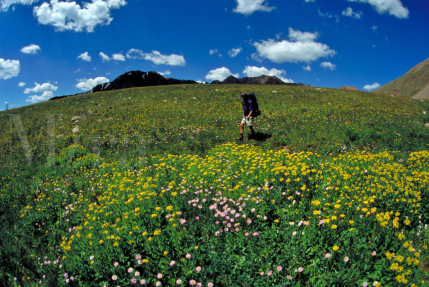 Man hiking and backpacking in the scenic backcountry of Arapaho National Forest, CO., Colorado