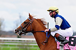 31 October 2009: Jockey Kent Desormeaux brings his ride, Hibiscus Drive, back to the owners and trainer after the first race.