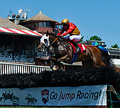 08/14/2019 - Steeplechase Allowance - Snap Decision