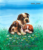 GIORDANO, CHRISTMAS ANIMALS, WEIHNACHTEN TIERE, NAVIDAD ANIMALES, paintings+++++,USGI2665,#XA# dogs,puppies