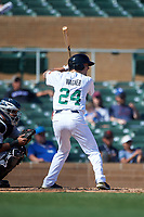 Surprise Saguaros Brandon Wagner (24), of the New York Yankees organization, at bat during the Arizona Fall League Championship Game against the Salt River Rafters on October 26, 2019 at Salt River Fields at Talking Stick in Scottsdale, Arizona. The Rafters defeated the Saguaros 5-1. (Zachary Lucy/Four Seam Images)