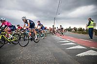 peloton<br /> <br /> 17th Ronde van Vlaanderen 2020<br /> Elite Womens Race (1.WWT)<br /> <br /> One Day Race from Oudenaarde to Oudenaarde 136km<br /> <br /> ©kramon