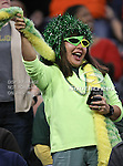 A Baylor Bear fan cheers during the 2010 Texas  Bowl football game between the Illinois  Fighting Illini and the Baylor Bears at the Reliant Stadium in Houston, Tx. Illinois defeats Baylor 38 to 14....