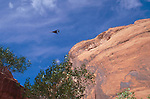 Utah, Military jet fighter low over Grand Gulch Primitive Area, Coyote Gulch, Southwest USA, Bureau of Land Management, (BLM) Glen Canyon National Recreation Area, Red rock formations, noise pollution, the noise from the jet engines was deafening.. .