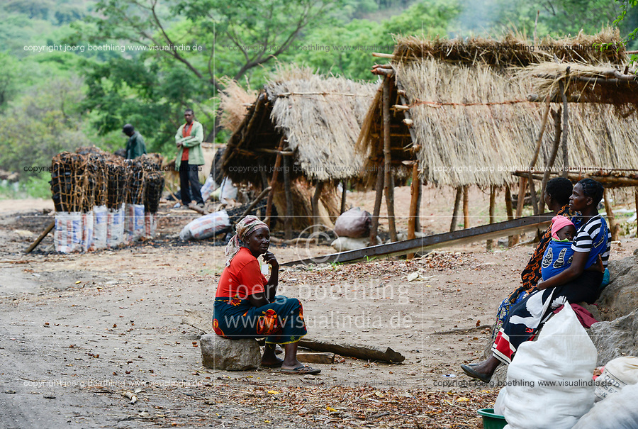 ZAMBIA, Sinazongwe District, charcoal seller