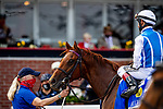 MAY 14, 2021: Alda  with John Velazquez win the Hiltop Stakes at Pimlico Racecourse in Baltimore, Maryland on May 14, 2021. EversEclipse Sportswire/CSM