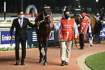 March 27 2021: AJUSTE FISCAL (URU) #1, in the post parade for the Dubai World Cup at Meydan Racecourse, Dubai, UAE. Shamela Hanley/Eclipse Sportswire/CSM
