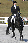 17 October 2008:  Canadian rider Noel Clark and Jack of Hearts compete during the dressage section of the Fair Hill International CCI*** Championship at Fair Hill Equestrian Center in Fair Hill, Maryland.  Dressage is the first stage of the three-day event.