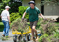 Men clearing brush from an outdoor garden.