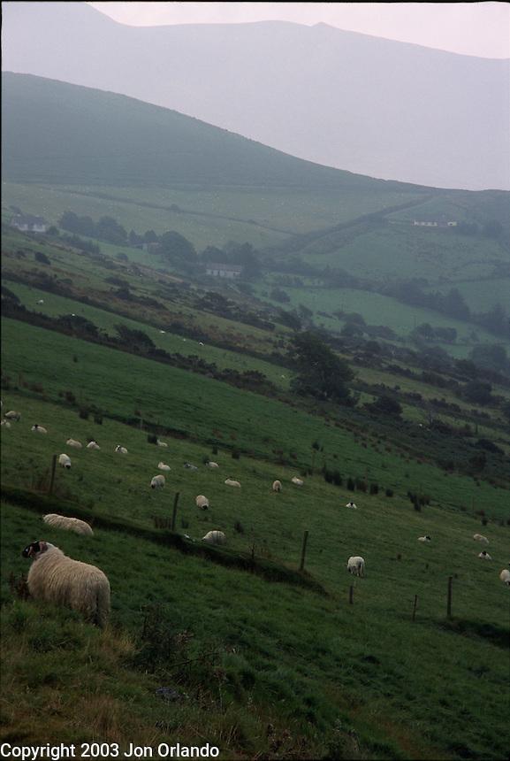 Mist rolls over the hills along the southwestern coast of Ireland.<br />