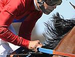 June 18, 2011.Sugarinthemorning ridden by Patrick Valenzzuela winning the Manhattan Beach Stakes at Hollywood Park, Inglewood, CA.