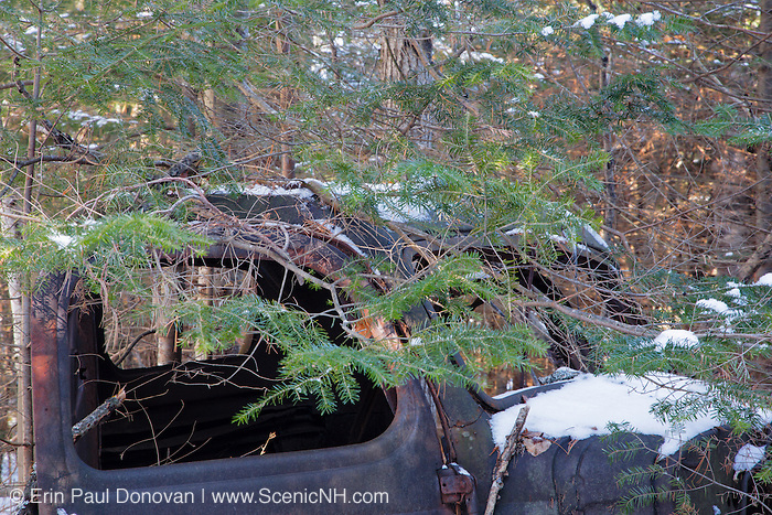 Abandoned truck in forest of Franconia, New Hampshire USA. This is possibly a late 1930s / 1940s Chevrolet or GMC truck