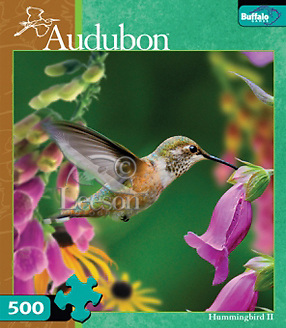 Products-Aubudon-500-Hummingbird-2