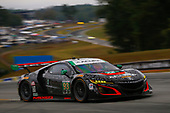 IMSA WeatherTech SportsCar Championship<br /> Motul Petit Le Mans<br /> Road Atlanta, Braselton GA<br /> Saturday 7 October 2017<br /> 93, Acura, Acura NSX, GTD, Andy Lally, Katherine Legge, Mark Wilkins<br /> World Copyright: Jake Galstad<br /> LAT Images