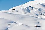 Italy, South Tyrol, Dolomites, Alto Adige - Trentino, winter scenery at Passo Sella mountain passroad with Sassolungo mountains | Italien, Suedtirol, Groednertal, oberhalb Wolkenstein, Winterlandschaft am Sellajoch, eingeschneite Almhuetten