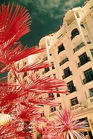 """Europe/France/Provence-Alpes-Côtes d'Azur/06/Alpes-Maritimes/Cannes : L'hôtel """"Martinez"""" sur la croisette"""