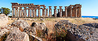 Fallen column drums of Greek Dorik Temple ruins  Selinunte, Sicily Greek Dorik Temple columns of the ruins of the Temple of Hera, Temple E, Selinunte, Sicily