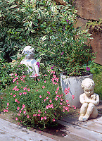 Diascia, variegated Cornus, pot container garden with cherub statues ornaments against wall
