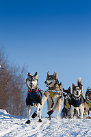 Aily Zirkle's teams crests the bank as she leaves the Shageluk village checkpoint during the 2011 Iditarod race.
