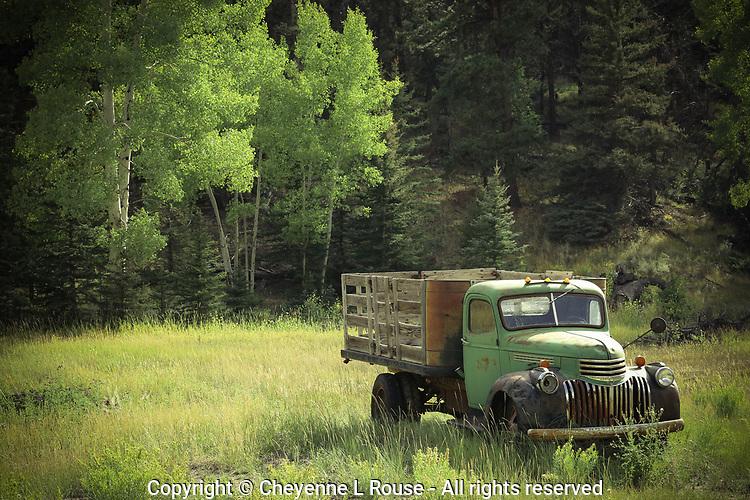 Green with Envy Chevy - Colorado