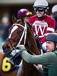 Untapable with Joe Talamo up at the Hollywood Starlet Stakes on December 07, 2013 at Betfair Hollywood Park in Inglewood, California .(Alex Evers/ Eclipse Sportswire)