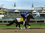 October 30, 2018 : Thunder Snow gallops at Churchill Downs on October 30, 2018  in Louisville, Kentucky in preparation for the Breeders' Cup Classic. Mary M. Meek/ESW/CSM