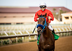 AUG 10: Collusion Illusion with Joe Talamo up wins the Best Pal Stakes at The Del Mar Thoroughbred Club in Del Mar, California on August 10, 2019. Evers/Eclipse Sportswire/CSM