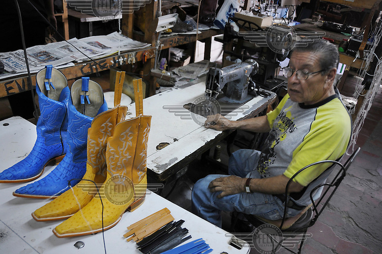 A bootmaker working out of a small workshop where he makes cowboy boots from ostrich leather dyed in bright colours.