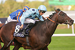 DUBLIN, IRELAND - SEPTEMBER 10: Almanzor #8, ridden by Christophe Soumillon and trained by Jean-Claude Rouget, wins The QIPCO Irish Champion Stakes on Champion Stakes Day at Leopardstown Race Course on September 10, 2016 in Dublin, Ireland. (Photo by Aindreas Lynch/Eclipse Sportswire/Getty Images)