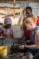 Peace Corps Volunteer Trying Tool for Hulling Cashew Nuts.  Group Juboo Cashew Processing Center, Fass Njaga Choi, North Bank Region, The Gambia
